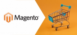 10 Reasons Why Experts Choose Magento For E-Commerce Website